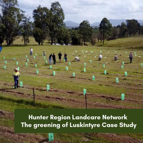 Hunter Region Landcare Network The greening of Luskintyre Case Study