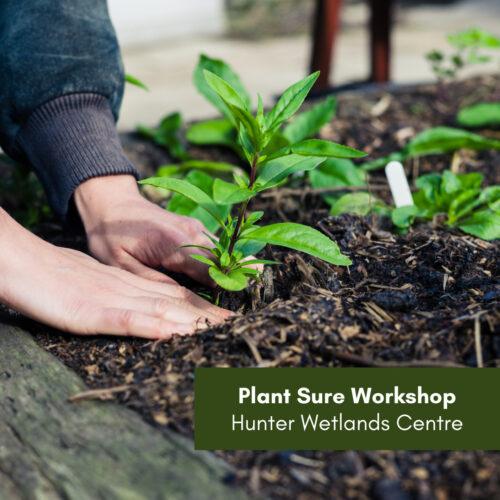 CANCELLED – Plant Sure Workshop – Hunter Wetlands Centre