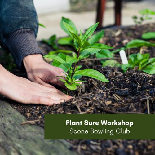 CANCELLED – Plant Sure Workshop – Scone Bowling Club