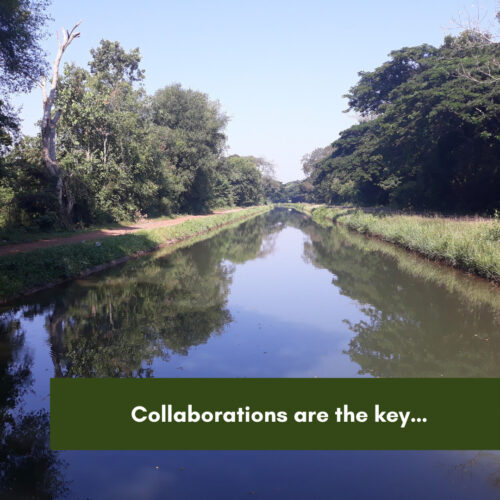 Collaborations are the key…