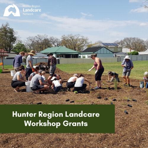 Hunter Region Landcare Network Workshop Grants 2021-22 for Member Groups