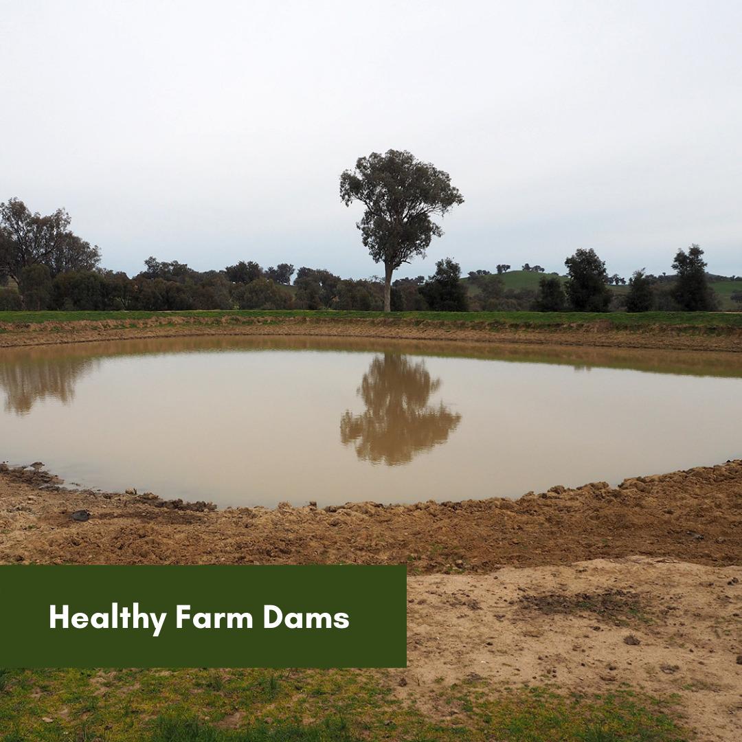 Healthy-Dams-Landcare-3